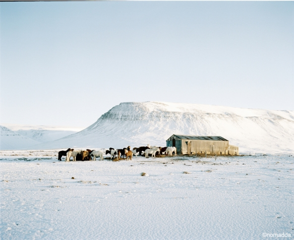 16352_CBA_ICELAND_21_07