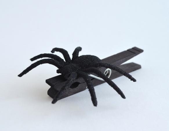 spider-clip